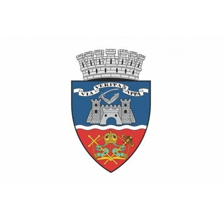 Steag Orasul Arad