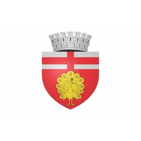 Steag Orasul Botosani