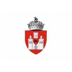 Steag Orasul Iasi