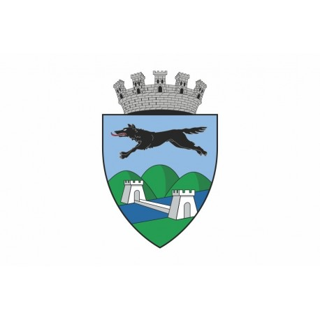 Steag Orasul Lugos