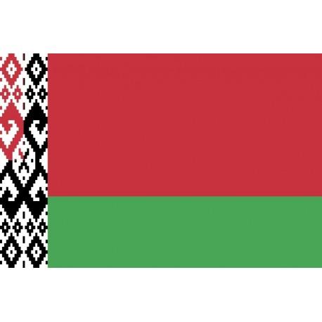 Steag Belarus