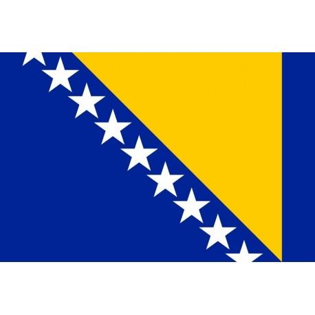 Steag Bosnia Si Hertegovina