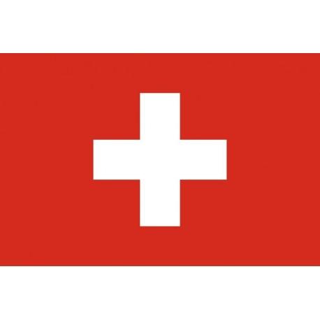Steag Elvetia