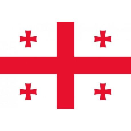 Steag Georgia