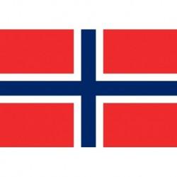 Steag Norvegia