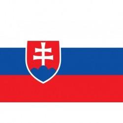 Steag Slovacia