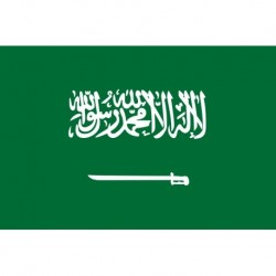 Steag Arabia Saudita