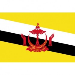 Steag Brunei