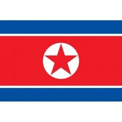 Steag Coreea de Nord