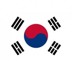 Steag Coreea de Sud