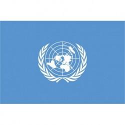 Steagul Natiunilor Unite