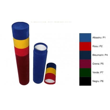 Tub din plus, cu capac tricolor, pentru diploma A4